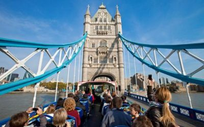 Original London Sightseeing Tour + St. Paul's Cathedral