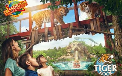 Chessington WOA Resort – 1 Day Ticket – EBO + Fried Chicken Company Meal Deal