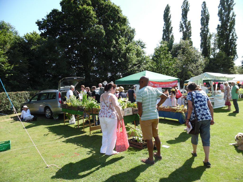 Summer-flower-show-Surrey