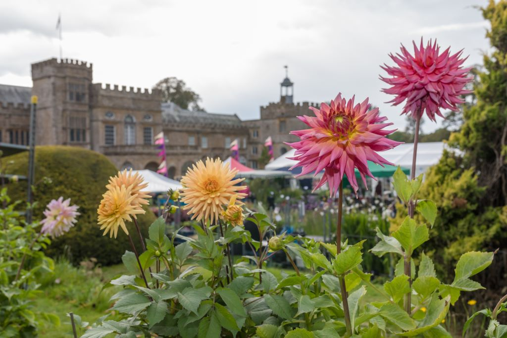 Forde-Abbey-Garden-Festival