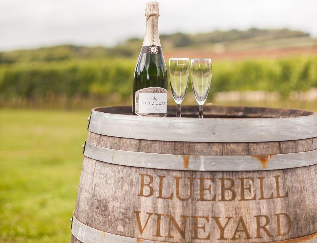 Vineyard-Tours-East-Sussex-Bluebell-Vineyard