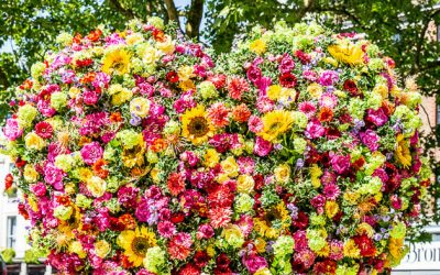 Lady's Beautiful Guide to Chelsea in Bloom