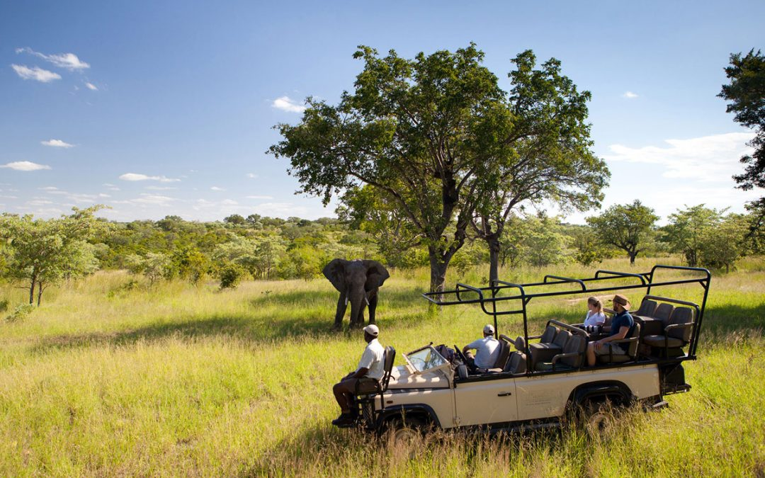 Four Night South African Escape to Sir Richard Branson's Luxury Safari Lodge Ulusaba and Mont Rochelle Hotel and Vineyard for Two