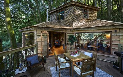 WIN! A digital detox getaway for two in a luxury treehouse