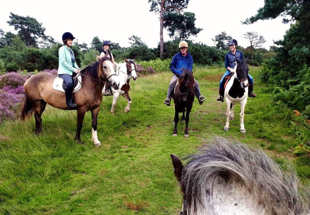 Horse-Riding-UK-East-Sussex