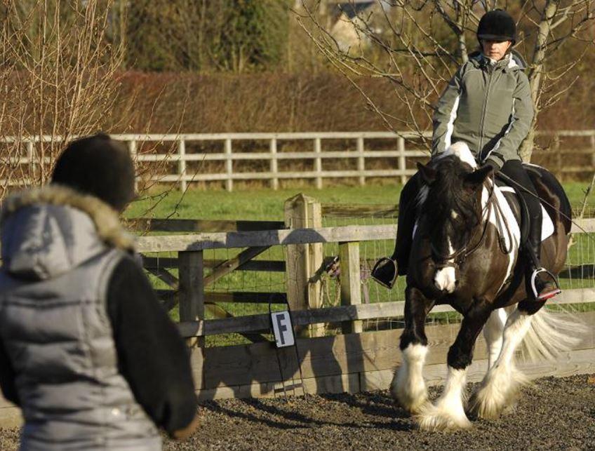 Horse-Riding-UK-Cambridgeshire