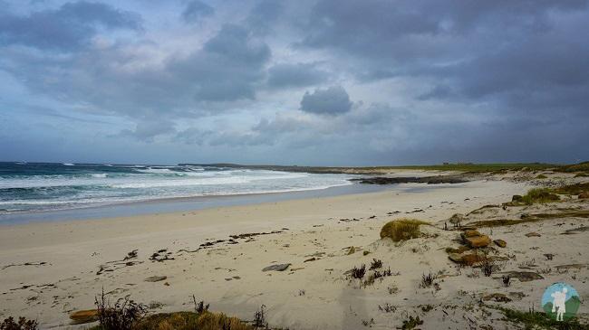 westray orkney grobost beach