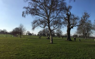 Brockwell Park and Lido – An underrated park