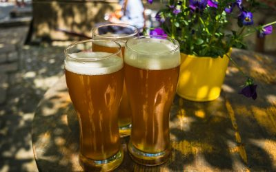 Czech Beer and Where to Find the Best in Prague