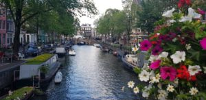 flowers and canal