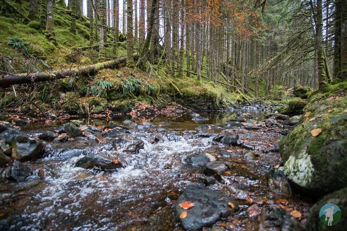 invergarry walks scottish highlands winter