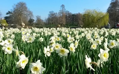 Tips for visiting Kew Gardens with kids