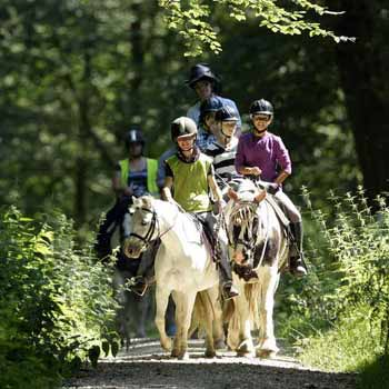 Horse Riding Break Hampshire for Two