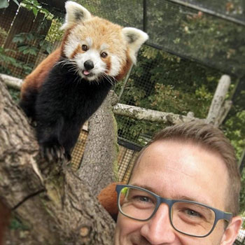 Red Panda Encounter for Four