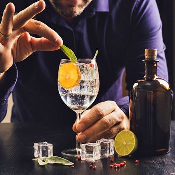 Gins of the World Tasting Experience