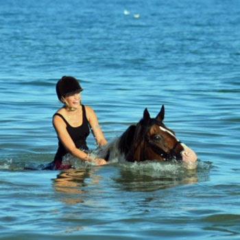 Beach Riding on The Sussex Coast