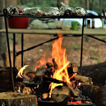Foraging and Cookery Course