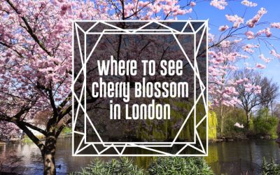 Where To See Cherry Blossom in London
