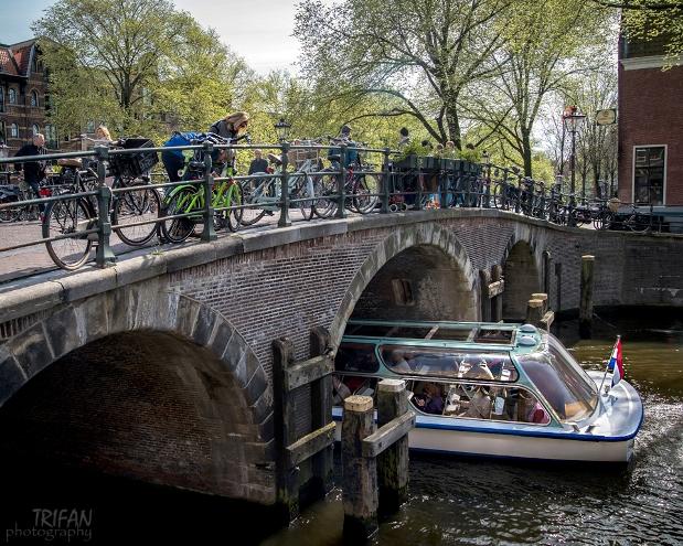 Jordaan area Amsterdam 2