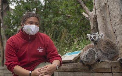 London Zoo needs your help – could you volunteer?