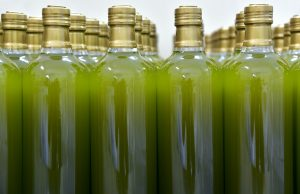 Insider's Guide to Italian Olive Oil