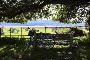 A historical cycling tour on Anglesey with Green Lane Bike Tours
