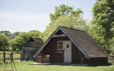 Why going off-grid is the perfect antidote to 2020