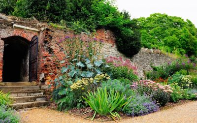 National Trust, English Heritage and other gardens still open in London for lockdown