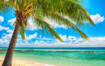 Take a mystery Caribbean holiday with a 'quarantine-free' guarantee